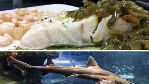 Menú + Aquarium