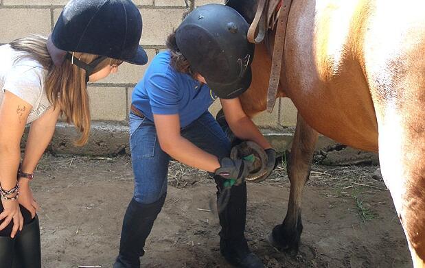 Equitación, Inglés, Colonias de Verano