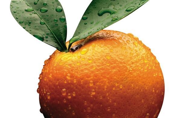 15 kg de naranjas Clemenules