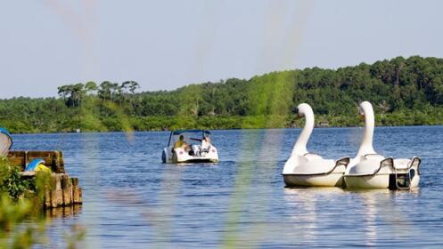 Landas en camping 4 en lago leon por 112 oferta con for Camping en las landas con piscina cubierta