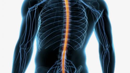Estudio postural + descuento en plantillas posturales