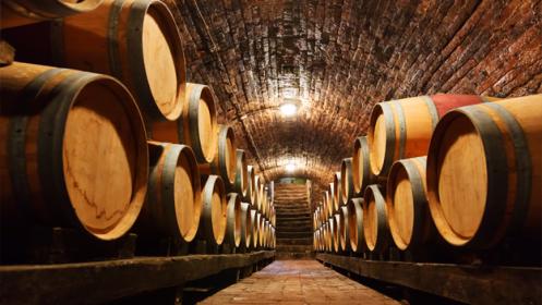 Cata + visita a Bodega de tu preferencia ¡Elige entre mas de 150 bodegas en España!