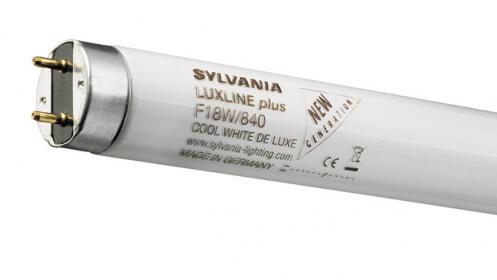 Cambia los antiguos fluorescentes por luces de LED