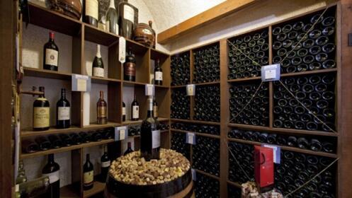 Ruta Paradores: 4d/3n experiencias entre viñedos